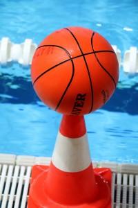 palla waterbasket